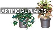 Buy Artificial Plants from Atkins for Complementing Your Place