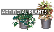 Want to Shop Artificial Plants? Visit Here…
