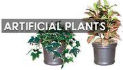 Explore the Best Designs in Artificial Plants