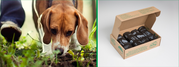 Buy Compostable & Biodegradable Dog Waste Bags in Bulk - BioBag